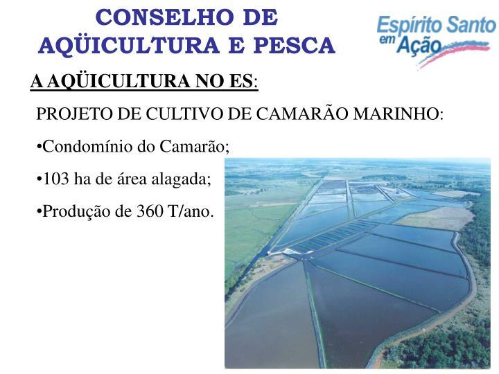 CONSELHO DE AQÜICULTURA E PESCA