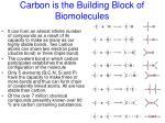 carbon is the building block of biomolecules