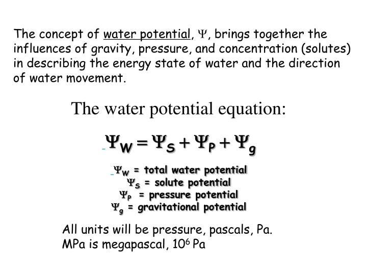water potential equation