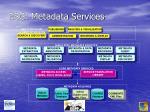 esg metadata services