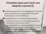 principales pasos para hacer una adopci n nacional i