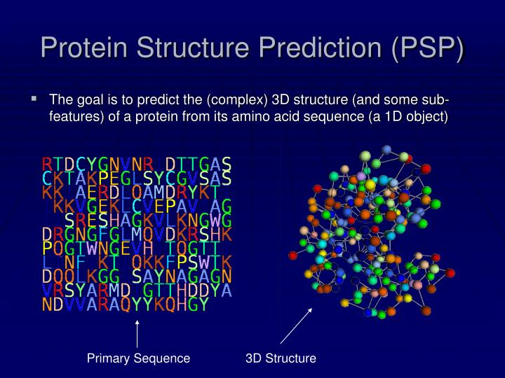 Protein structure prediction psp
