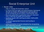 social enterprise unit1