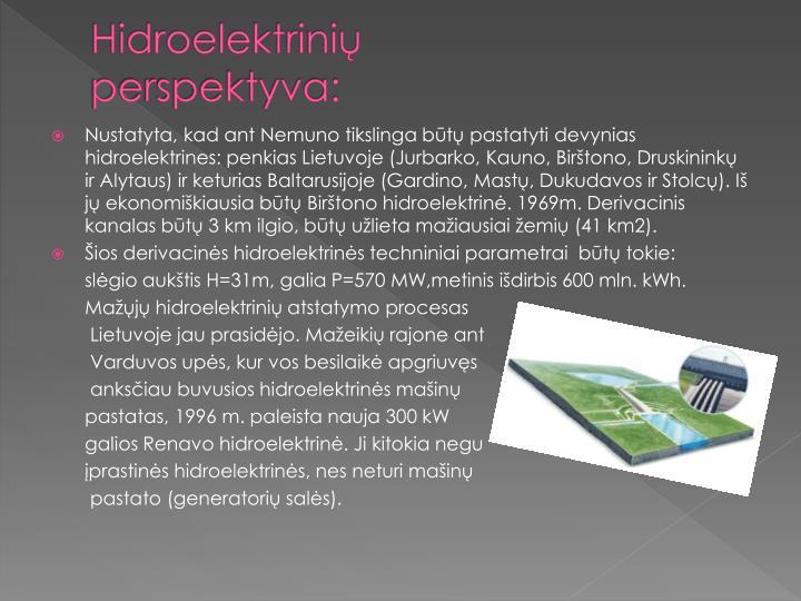 Hidroelektrinių perspektyva: