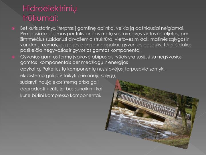 Hidroelektrinių trūkumai: