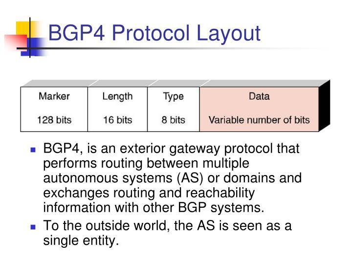 BGP4 Protocol Layout