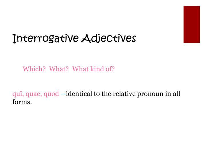 Interrogative Adjectives