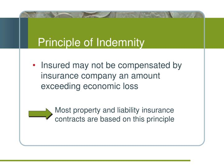 Principle of Indemnity