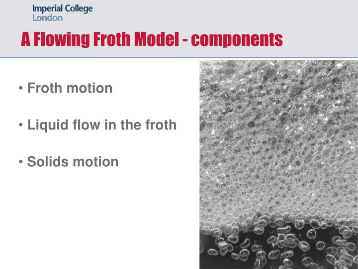 A Flowing Froth Model - components
