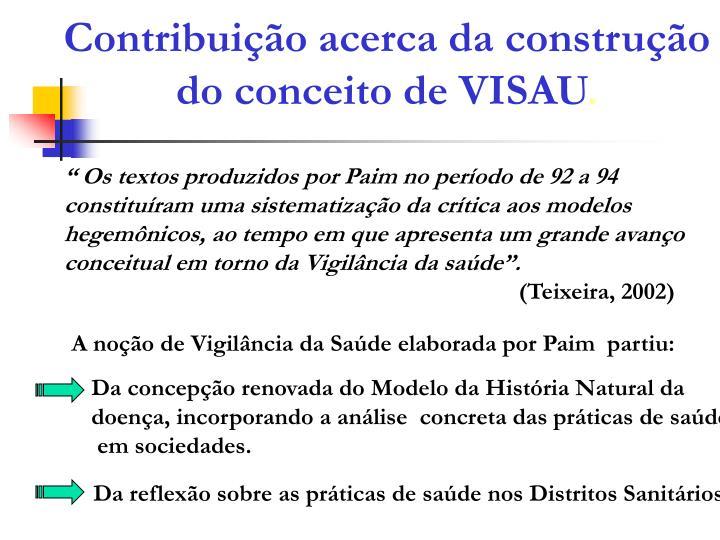Contribuição acerca da construção do conceito de VISAU