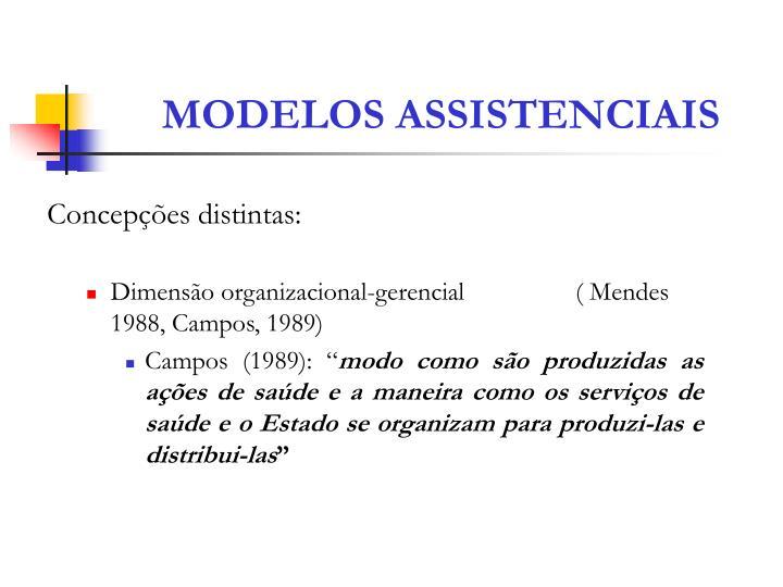 Modelos assistenciais1