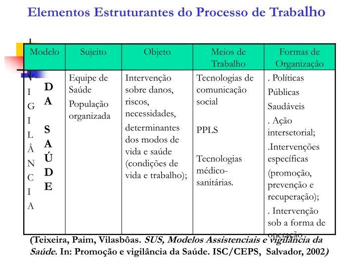 Elementos Estruturantes do Processo de Trab