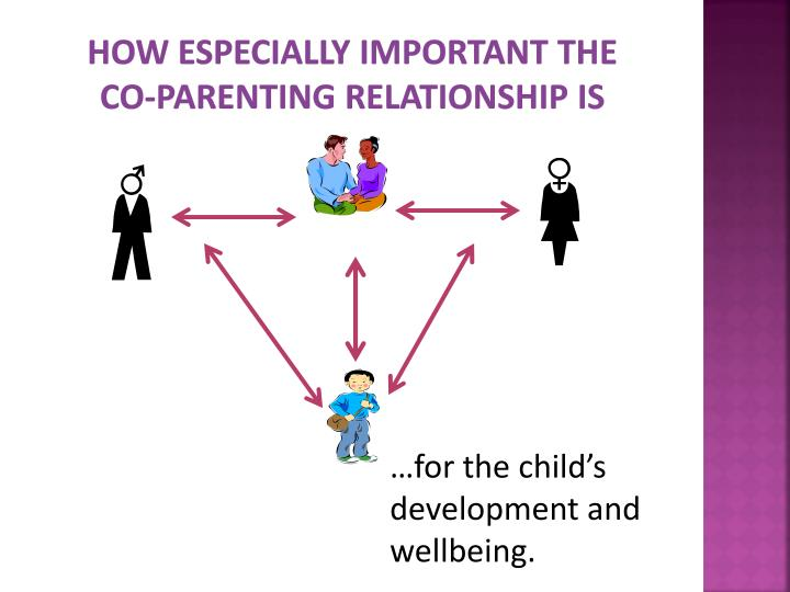 How especially important the co parenting relationship is