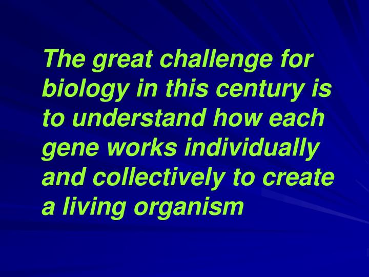 The great challenge for biology in this century is to understand how each gene works individually and collectively to create a living organism