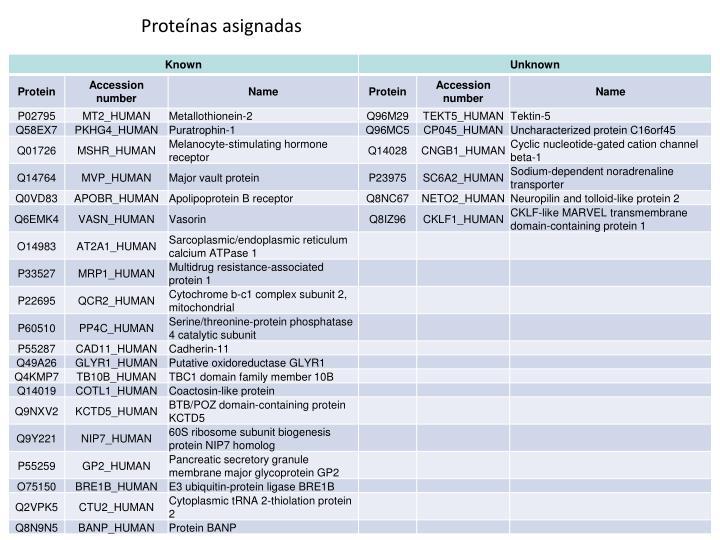 Proteínas asignadas