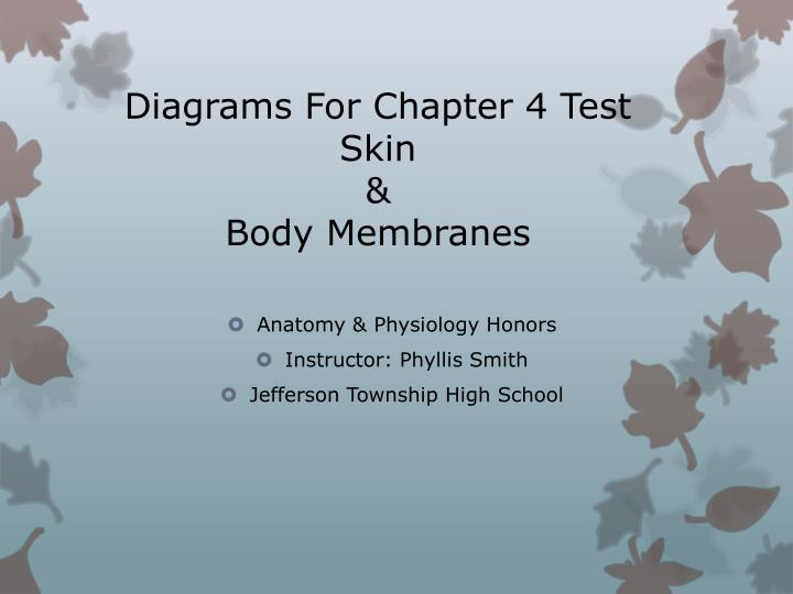 PPT - Diagrams For Chapter 4 Test Skin & Body Membranes ...