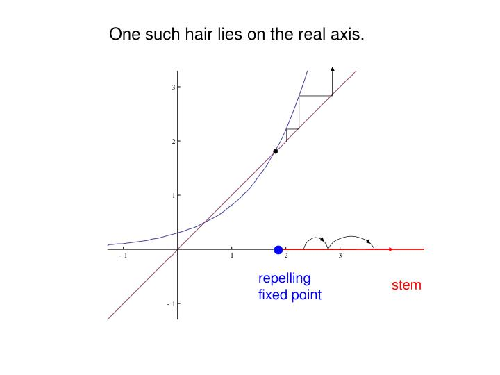 One such hair lies on the real axis.