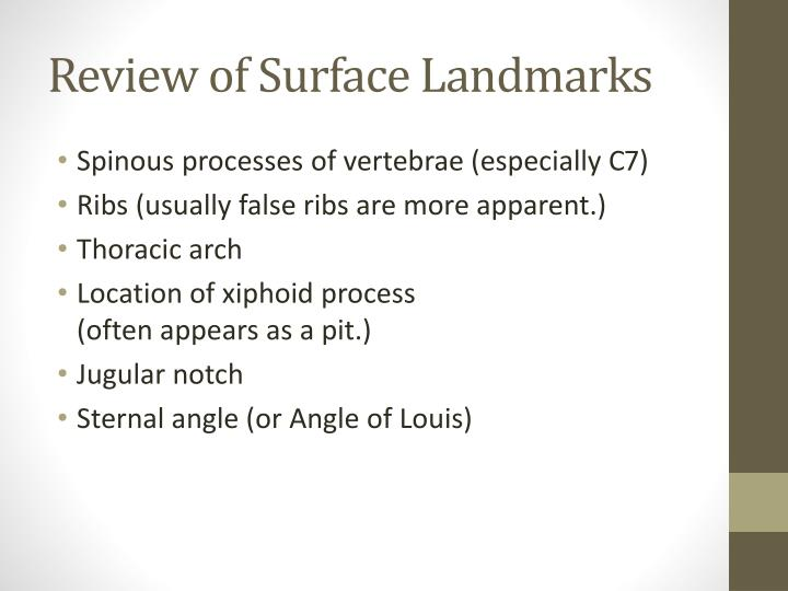 Review of Surface Landmarks