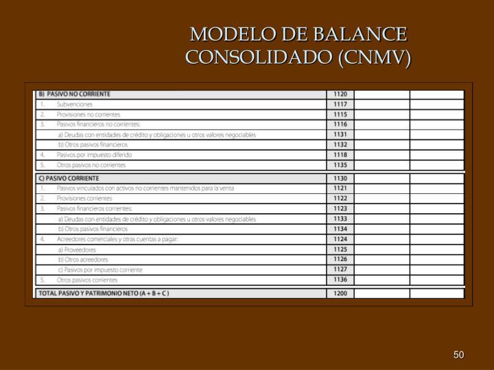MODELO DE BALANCE CONSOLIDADO (CNMV)