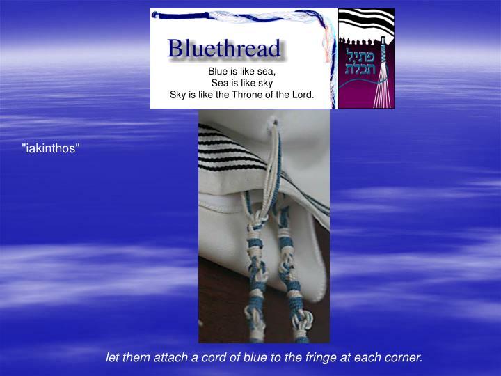 Blue is like sea,