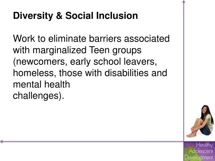 Diversity & Social Inclusion