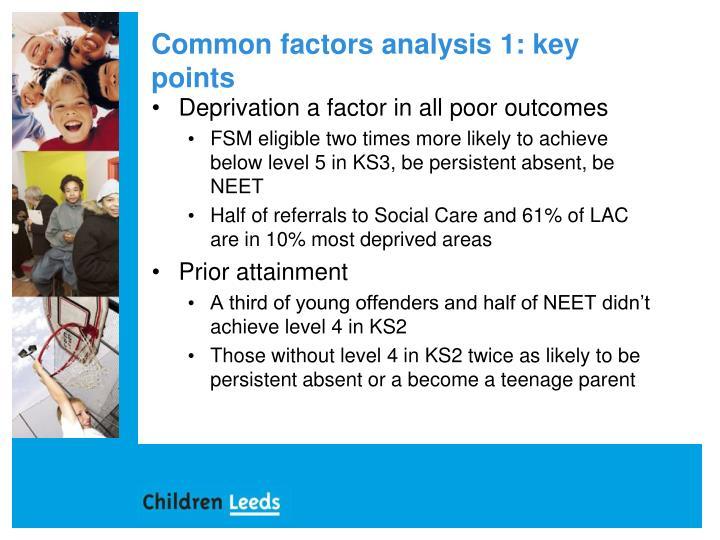 Common factors analysis 1: key points