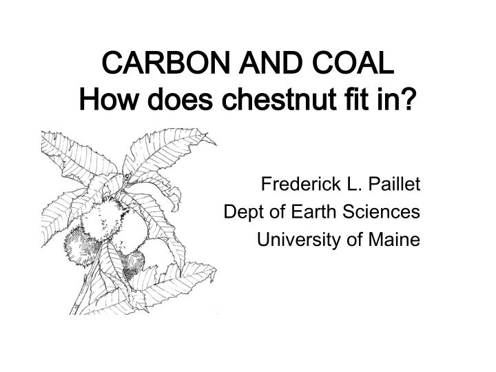 Carbon and coal how does chestnut fit in