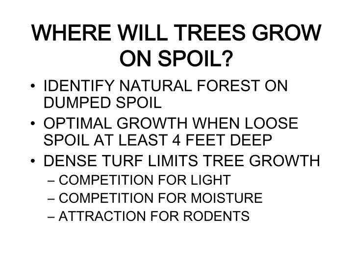 WHERE WILL TREES GROW ON SPOIL?