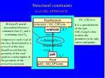 structural constraints2