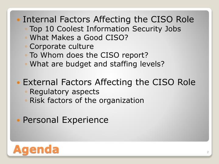 Internal Factors Affecting the CISO Role