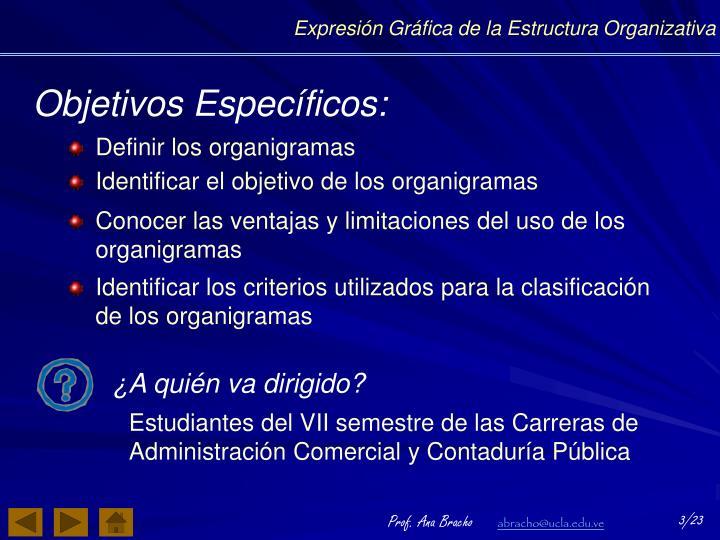 PPT - Expresión Gráfica de la Estructura Organizativa PowerPoint ... e4e98800b7c80