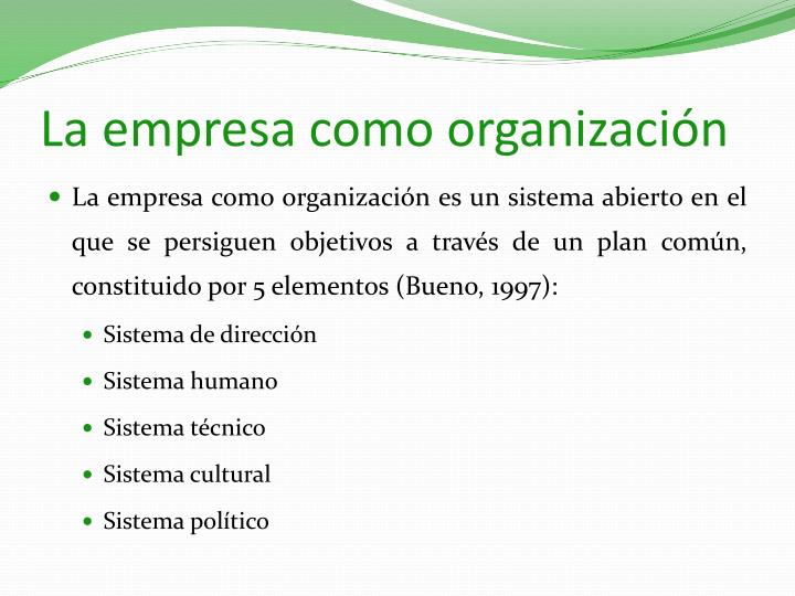 La empresa como organización
