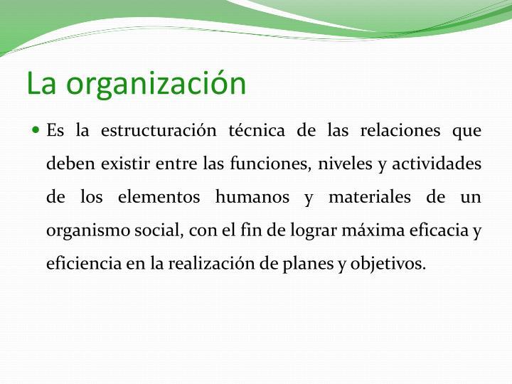 La organizaci n