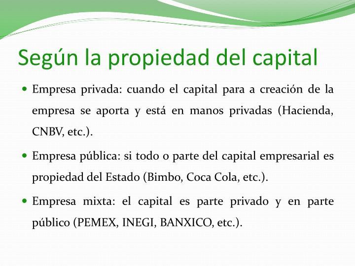 Según la propiedad del capital