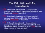 the 13th 14th and 15th amendments1