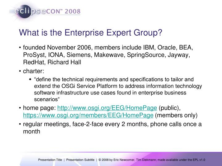 What is the enterprise expert group