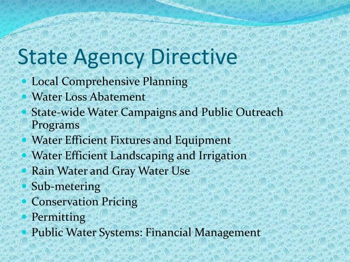 State Agency Directive
