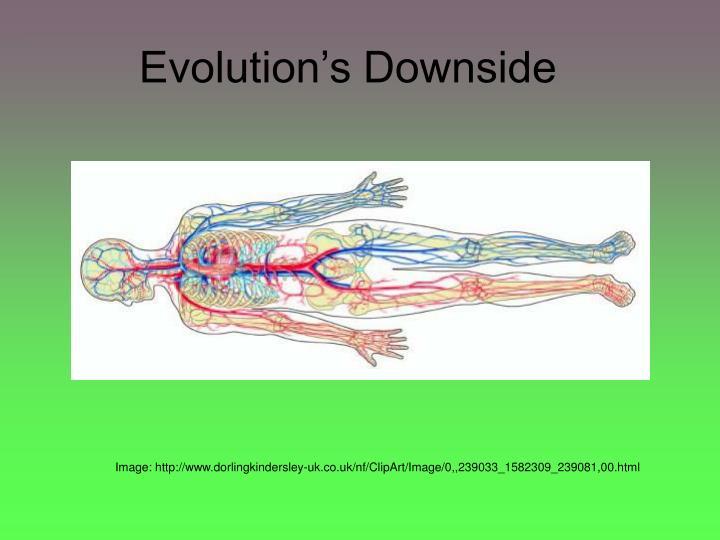 Evolution's Downside