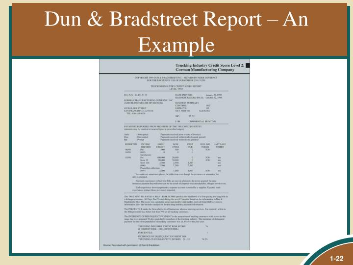 Dun & Bradstreet Report – An Example