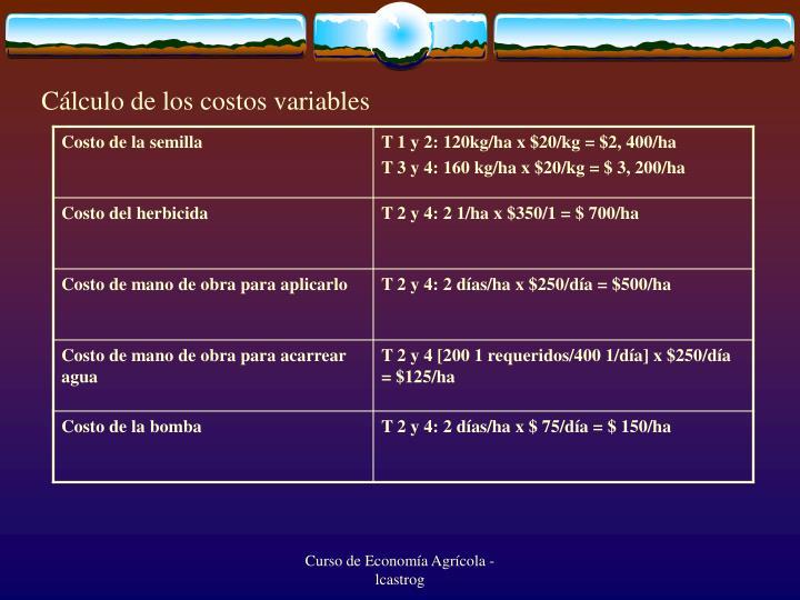 Cálculo de los costos variables