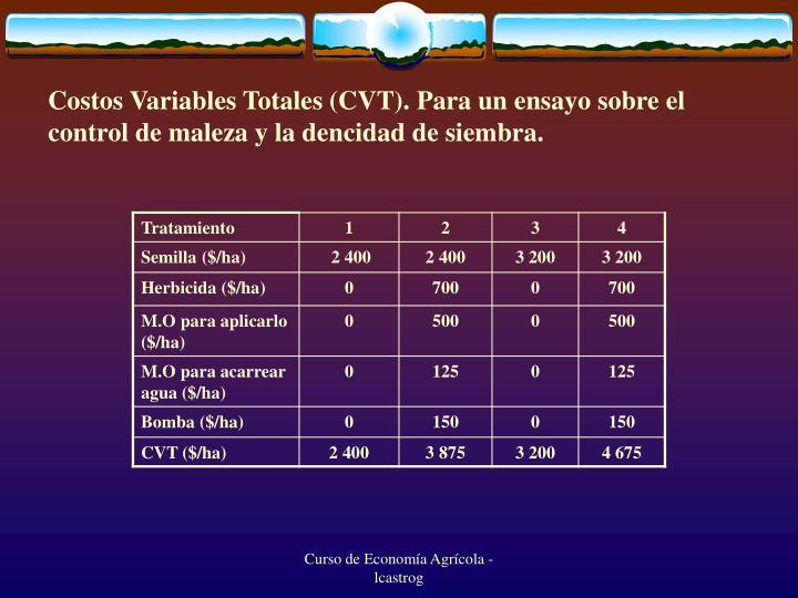 Costos Variables Totales (CVT). Para un ensayo sobre el control de maleza y la dencidad de siembra.