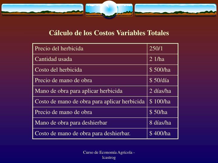 Cálculo de los Costos Variables Totales