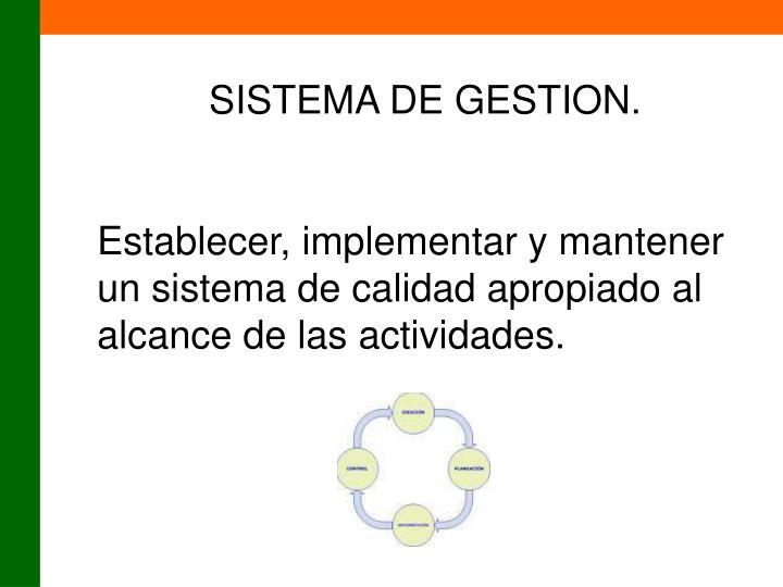SISTEMA DE GESTION.