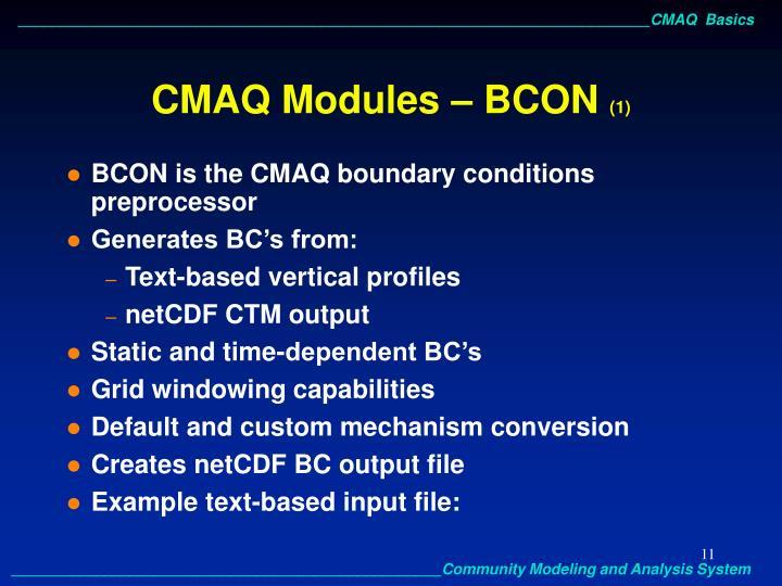 CMAQ Modules – BCON