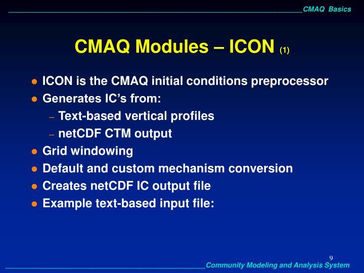 CMAQ Modules – ICON