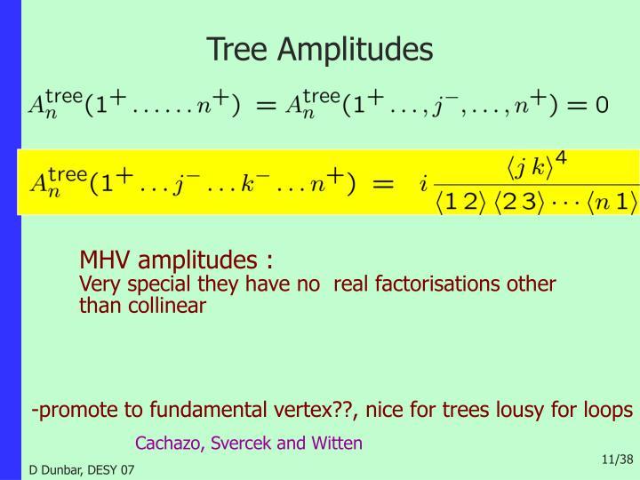 Tree Amplitudes