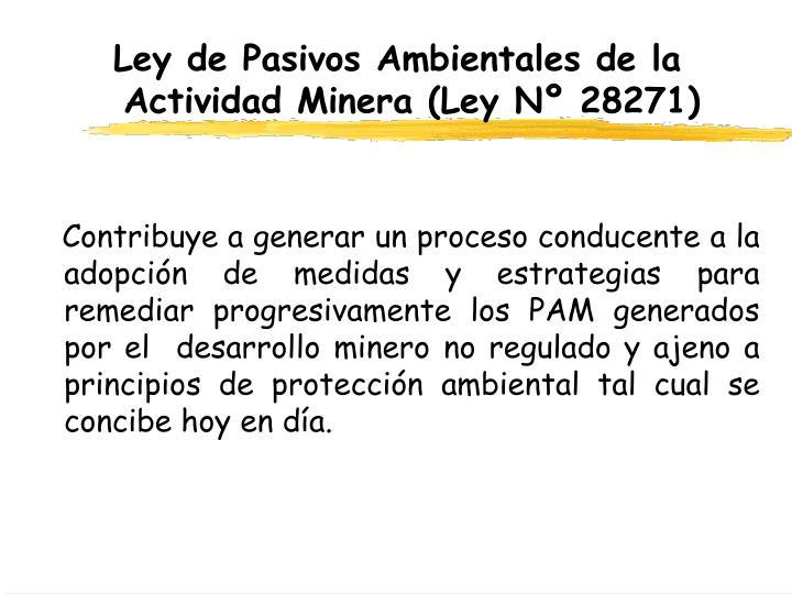 Ley de Pasivos Ambientales de la Actividad Minera (Ley Nº 28271)