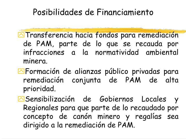 Posibilidades de Financiamiento
