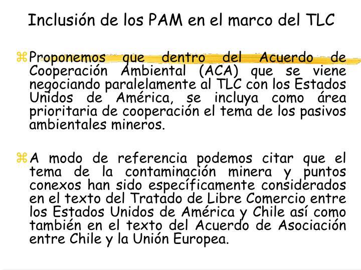 Inclusión de los PAM en el marco del TLC
