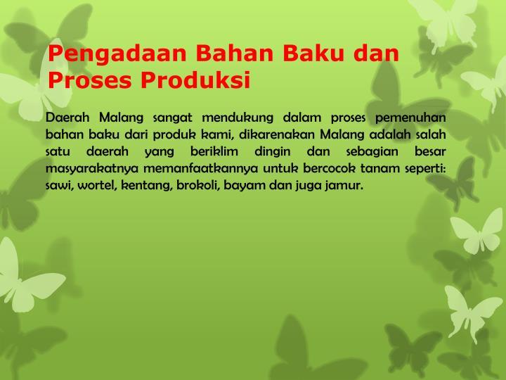 Pengadaan Bahan Baku dan Proses Produksi